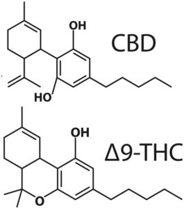 Cannabinoid content Analysis