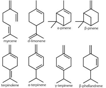 Figure 11: example of monoterpenes