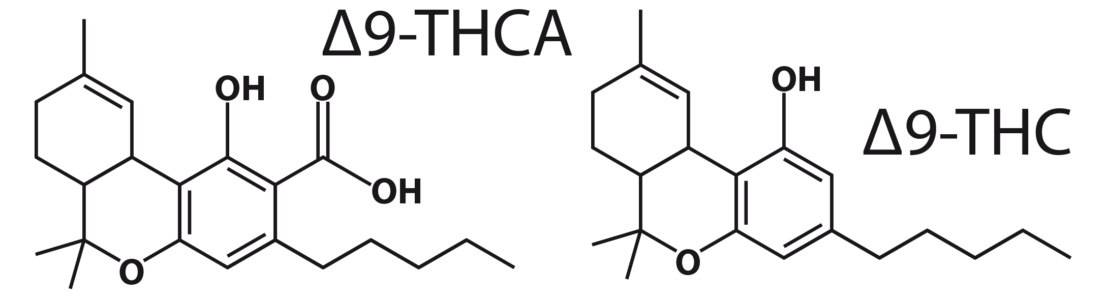 Figure 3: Δ9-THCA and Δ9-THC molecules.