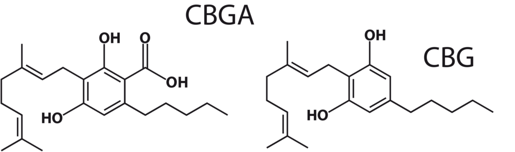 Figure 5: CBGA and CBG molecules.