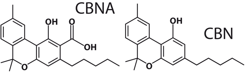 Figure 7: CBN and CBNA molecules.